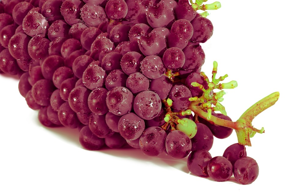 grape-2104639_1920