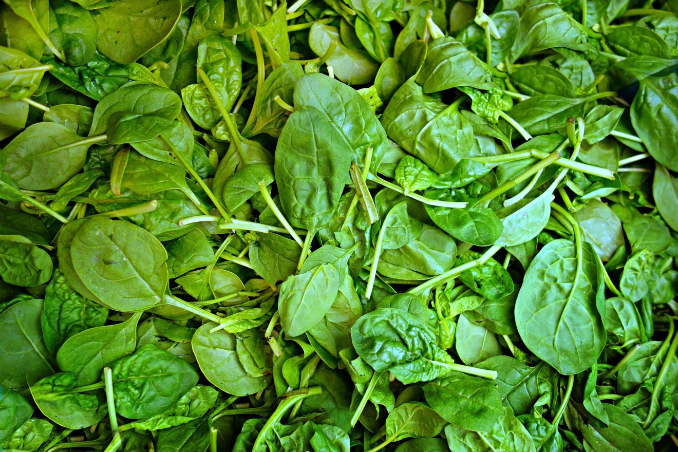 spinach-1522283_1920