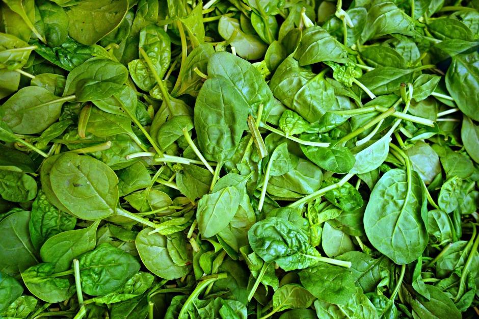 spinach-1522283_1920